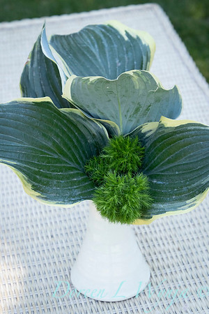 Hosta - Dianthus arrangement_2193