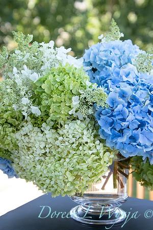 Hydrangeas in a vase_2165