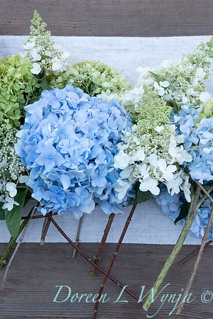 Hydrangeas arrangement on linen_2171