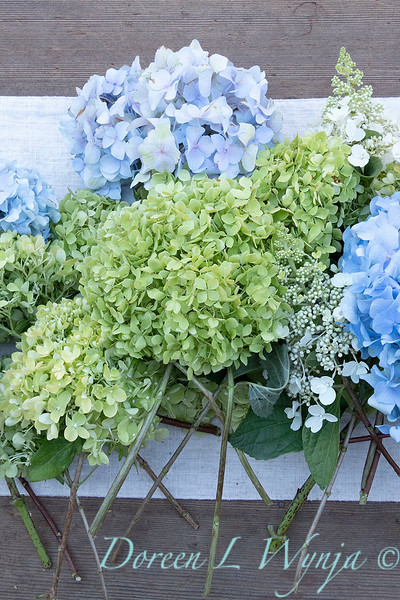Hydrangeas arrangement on linen_2170