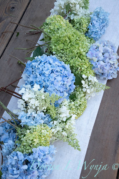 Hydrangeas arrangement on linen_2172