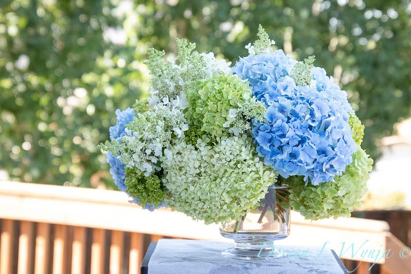 Hydrangeas in a vase_2161