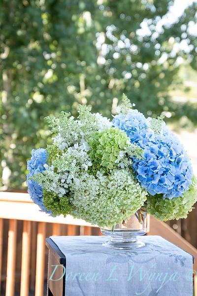 Hydrangeas in a vase_2160