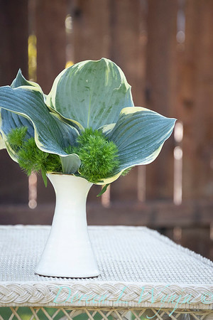 Hosta - Dianthus arrangement_2195