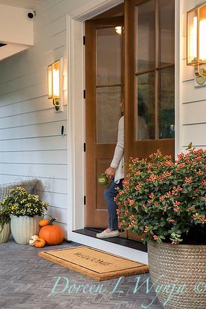 41805 Hypericum x inodorum 'KOLPINOT' FloralBerry Pinot front door_1232
