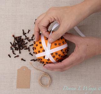Clove and Orange holiday ball_893