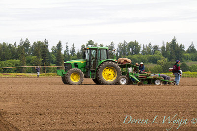 Planting_4700