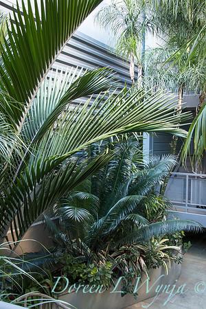Debra's Vertical Garden_6005