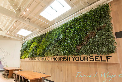 Emeryville Market living wall_3054