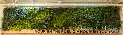 Emeryville Market living wall_3053_5x13
