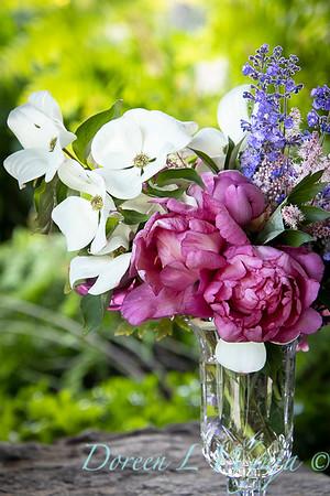 5259 Peaonia x 'Smith Opus 2' Takara - Cornus 'Venus' cut flowers_0972