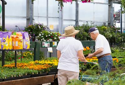 Al's Garden Center_139