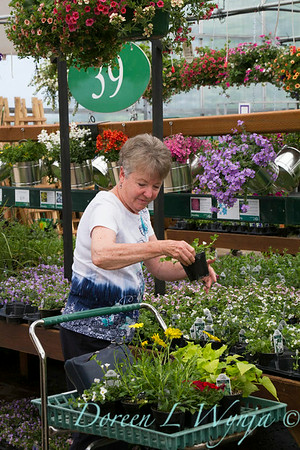 Al's Garden Center_137