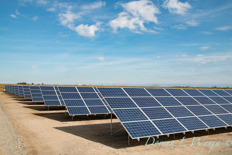 Solar panel energy for farming_7187