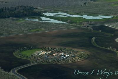 Violich Farms_8085