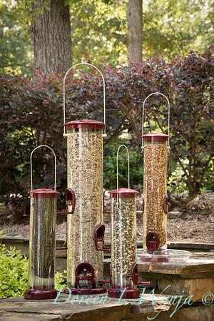 Bird Feeder Collection_6024