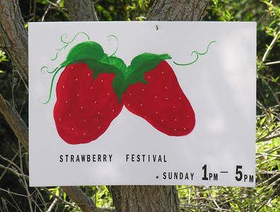 116 Strawberry Sign
