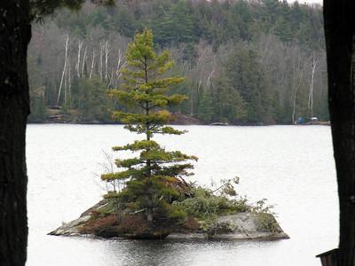 N2394 Pearls Tree