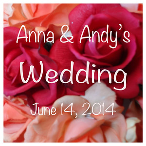 Anna & Andy's Wedding
