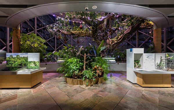 The Green Planet Museum