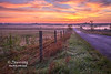 Heartland Sunrise