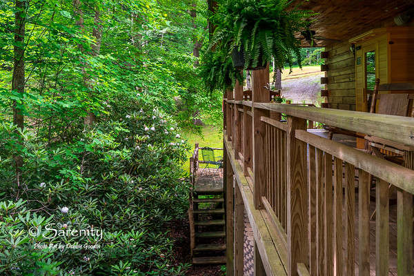 The side porch overlooks a Rhododendron Forest and houses a dry sauna!