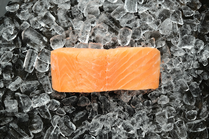 Salmon - Ice_02