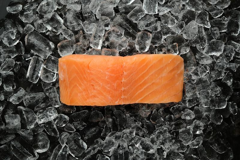 Salmon - Ice_01