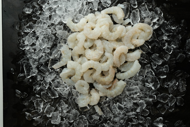 Shrimp - Ice_01