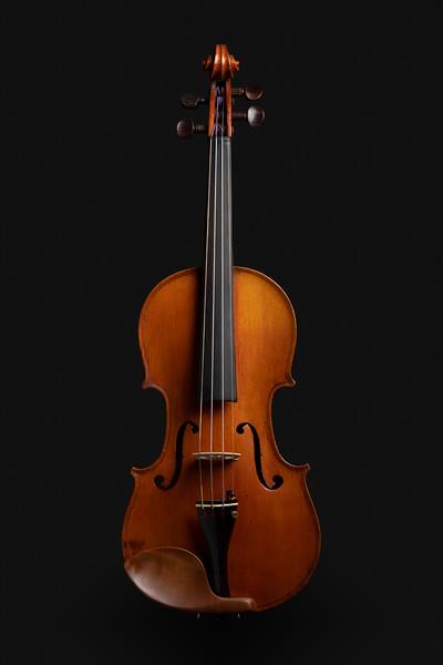 Willamette Trading Post - Violin 29 - 0001