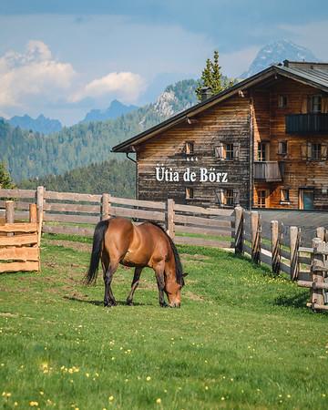Ütia de Börz - detail of the exteriors from the  horse pen  // Outdoor, nature photography