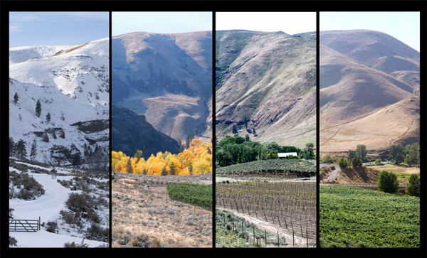 Cox Canyon Winery<br /> Ellensburg, Washington