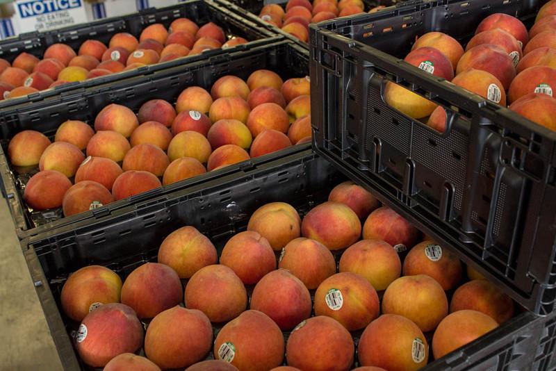 August Flame Peach