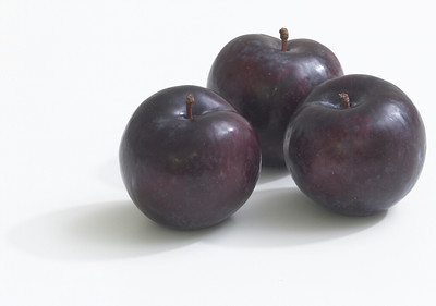 Angelino Plum