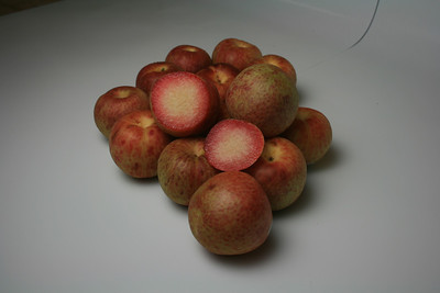 Dapple Dandy Plumcot