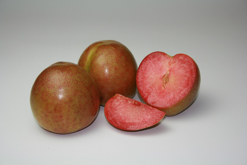 Dapple Fire Plumcot