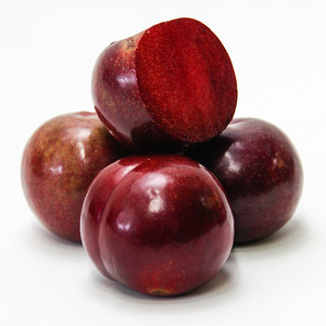 Festival Red Plumcot