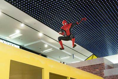 Spiderman lo-res 108