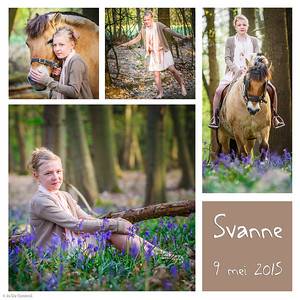 1504_Svanne_K6
