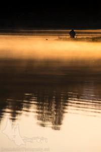 Sunrise Fishing at Evergreen Lake