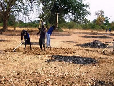 Tilling the soil for the garden.