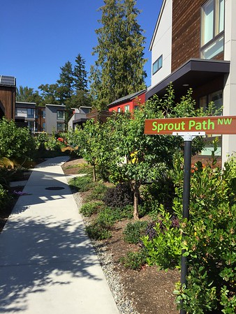 2016-08-05  Grow Neighborhood (Phase I) on Bainbridge Island Sprout Path