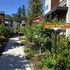 2016-08-05  Grow Neighborhood (Phase I) on Bainbridge Island Sprout Path