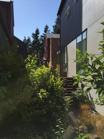 2016-08-05  Grow Neighborhood (Phase1) on Bainbridge Island  View of Area Between Read of Units