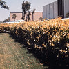 1978-XX-XX - TIC - Industrial Park Landscaping