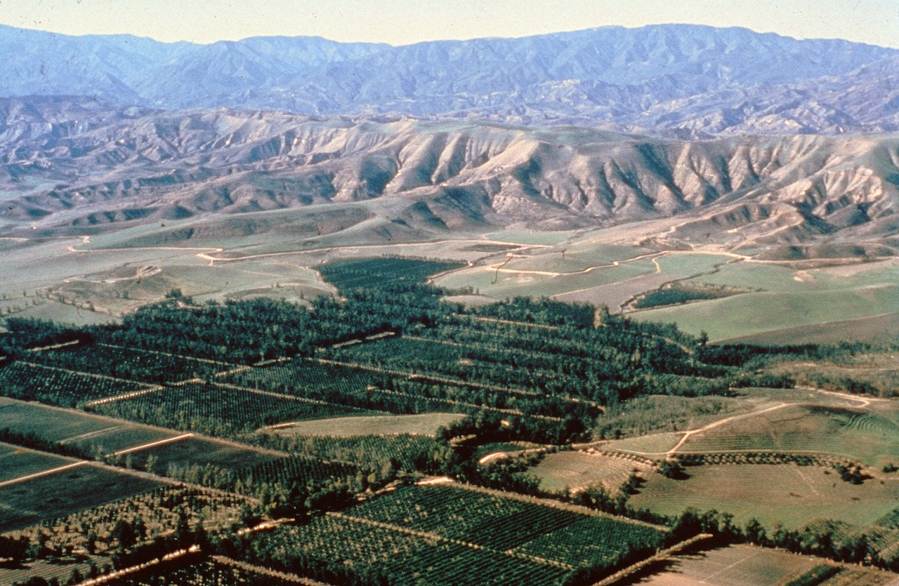 1978-XX-XX - TIC - Aerial of Agricultural Area South of Lomas de Santiago