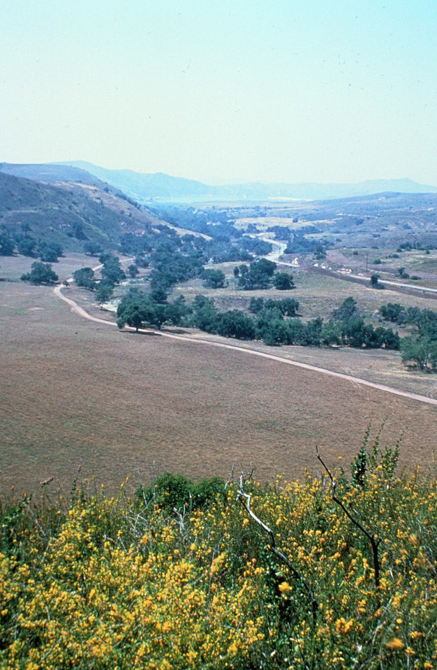 1980-XX-XX - TIC - Peters Canyon Road