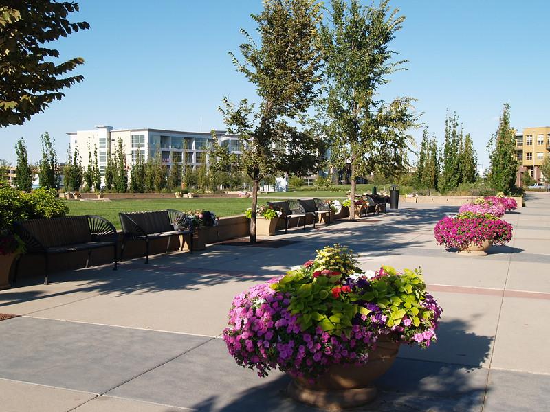 2007-07-22 - Denver - Stapleton - Park and parkway (2)