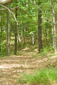 2007 fall retreat at Camp Happy Valley.