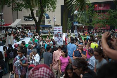 Palestine protest 7 5 14-7453